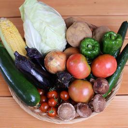 【定期便/地域限定/送料込】ママンカ市場 野菜セット7〜9品
