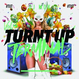 TURNT UP TERMINAL VOL.4 / DJ MDK