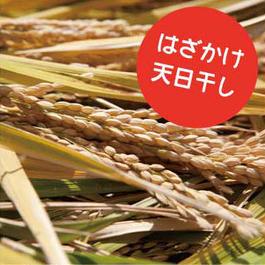 【新米・天日干し】自然栽培 ひのひかり 玄米 5kg