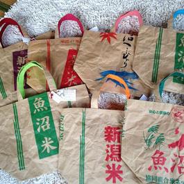 米袋バッグ 大(布付き)