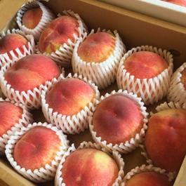 ◆規格外◆【配送(送料着払い)】特別栽培の木成り完熟! 伊東厚さんの「桃」3kg