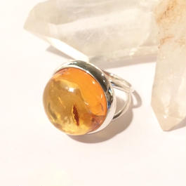 【受注商品】Dome ring S <amber>