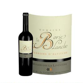 フランス赤ワイン 「ル・テロワール・ダルティトゥード」