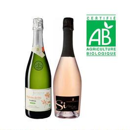 フランス ビオスパークリングワイン 2本セット ブルトタイプ とロゼ 750ml