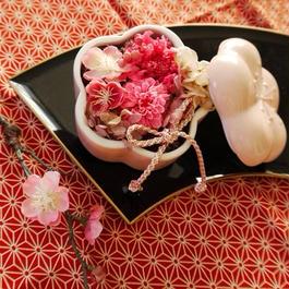 ピンク梅の小鉢
