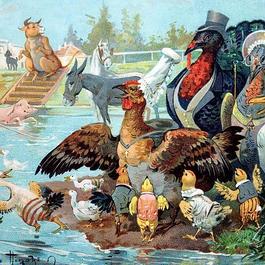 ◆フランス Au bon marché アンティーククロモス◆水辺で水浴びを楽しむ動物たち
