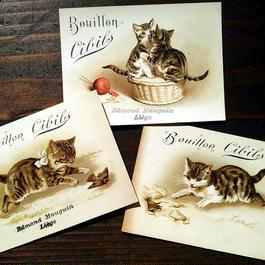 Helena Maguire 子猫のクロモスカードセット