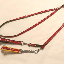 【セットでお得】Y字ショルダーリードとカラー2種(赤ミツバチ)中・大型犬用
