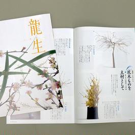 月刊「いけ花龍生」1年間購読