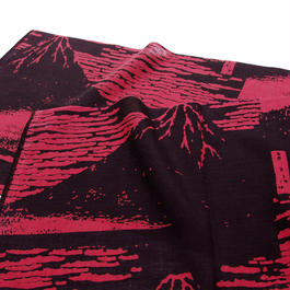 SPORTS TENGUI   赤富士