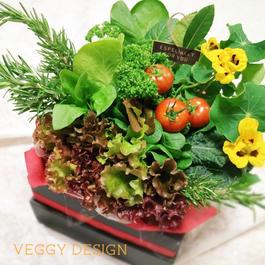 記念日・就職・退職など各種お祝い野菜ブーケ・キューブボックスタイプ(クール便送料無料)