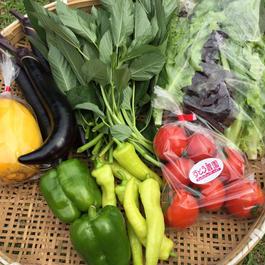 宅配②つくいやさいお任せ野菜BOX3ヶ月コース。お届日毎月第2・4土曜日 18000(送料込)