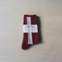 メンズ靴下 -red×platinum-