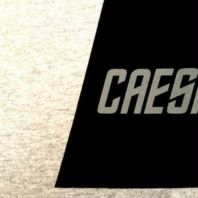 Caesium Area Tee / Grey