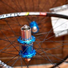 ChrisKing Classic Hub x Stan's No Tube x Sapim Hand Build Wheel