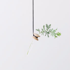 suspended flower  oak