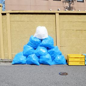 富士山ゴミ袋(10枚入)