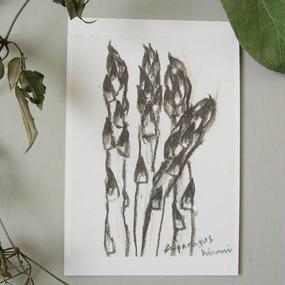 postcard / asparagus, brown