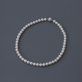 【Special/necklace】Special Price White Pearl
