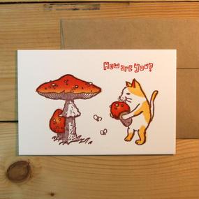 タマゴタケを抱いた猫