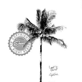 キャンバス 530×410×D20mm 【 One palm tree 】