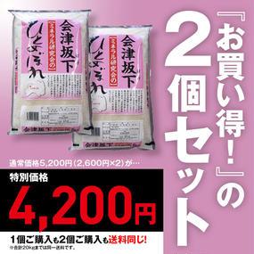 カネダイ 会津坂下ミネラル研究会の会津坂下産ひとめぼれ(5kg)2個セット