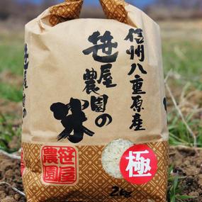 笹屋農園 信州八重原米コシヒカリ・極 生産者限定米 笹屋農園の米 特別栽培米(2kg)(栽培期間中、農薬・化学肥料を一切使用せず栽培しました)