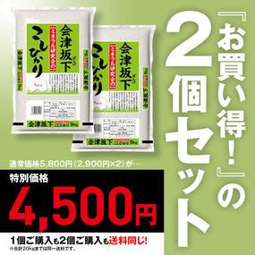 カネダイ 会津坂下ミネラル研究会の会津坂下産コシヒカリ(5kg)2個セット