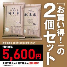 よつばフード 越王米 新潟産コシヒカリ 循環型農業米・生産者限定(5kg)2個セット