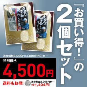 益子米穀 大久保さんのコシヒカリ(5kg)2個セット