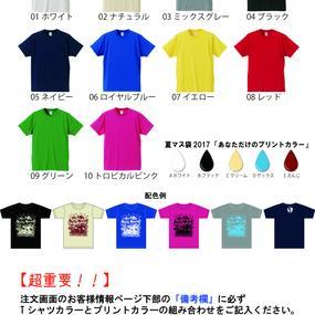 【限定100セット】 あなだけの夏マス袋2017※T驚愕のTシャツ全50パターン!