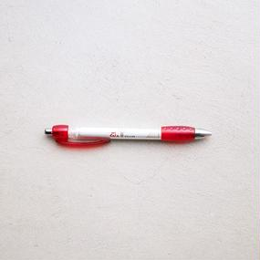 PEN from POLAND by MIEKO ISE
