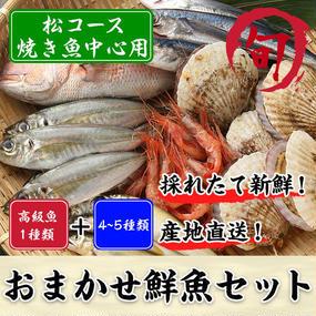 鮮魚セット 松コース(焼き魚中心用)
