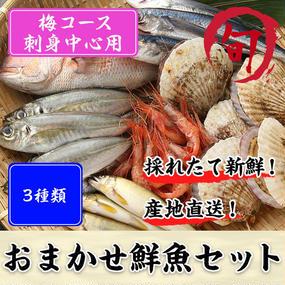 鮮魚セット 梅コース(刺身中心用)