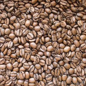 自家焙煎コーヒー豆 セラード・樹上完熟 ミディアムロースト 100g