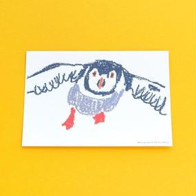 ポストカード動物1/ツノメドリ