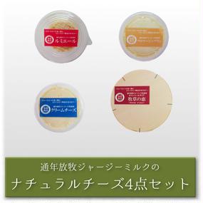 ナチュラルチーズ 4点セット 【ギフト包装対応可】