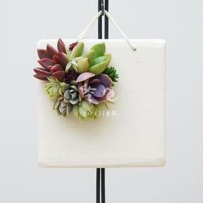 多肉植物のタブロー(TABLEAU)壁掛け 10cm×10cm