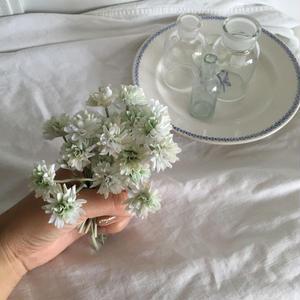シロツメクサの花冠 ・キット
