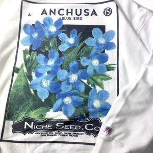 niche.USA / Flower Seeds Crew Neck Sweat - ANCHUSA