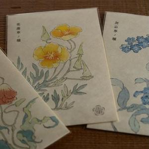 花の種レター(虞美人草/花菱草/勿忘草)