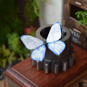 蝶のマグネット スルコウスキーモルフォ 2Ssize