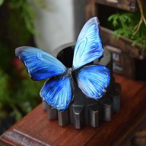 蝶のマグネット メネラウスモルフォ Blue  Ssize