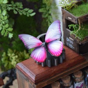 蝶のマグネット メネラウスモルフォ Sakura Msize