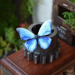 蝶のマグネット メネラウスモルフォ Aqua 2Ssize