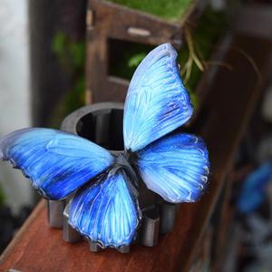 蝶のマグネット メネラウスモルフォ Blue Msize