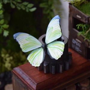 蝶のマグネット メネラウスモルフォ SG lg.col Mサイズ
