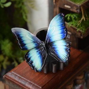 蝶のマグネット ディダミアモルフォ Turquoise  Ssize