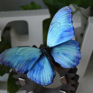 蝶のマグネット メネラウスモルフォ  Turquoise+Pearlblue Lsize 試作