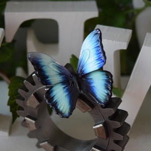 蝶のマグネット ディダミアモルフォ Turquoise  2Ssize